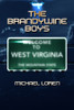 The Brandywine Boys - eBook