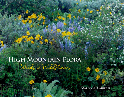 High Mountain Flora: Weeds or Wildflowers