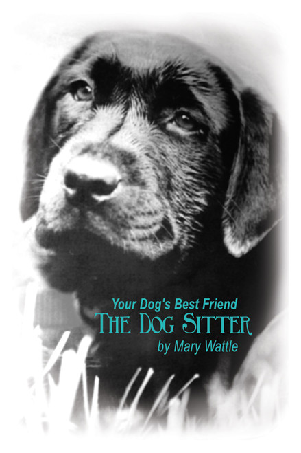 Your Dog's Best Friend: The Dog Sitter
