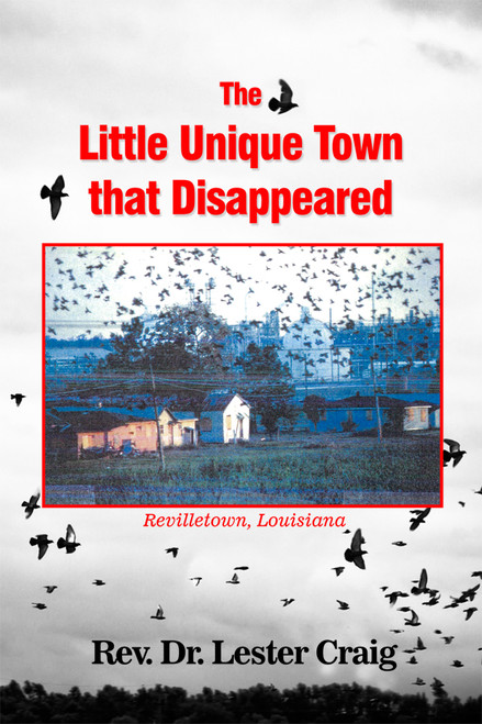 The Little Unique Town that Disappeared - eBook