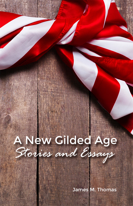 A New Gilded Age - eBook