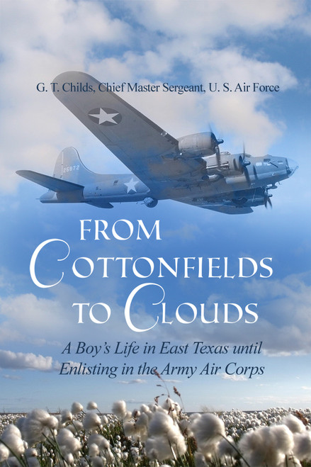From Cottonfields to Clouds - eBook