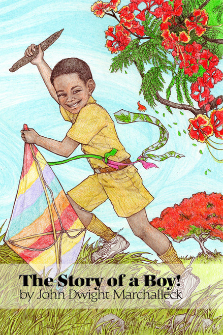 The Story of a Boy! - eBook