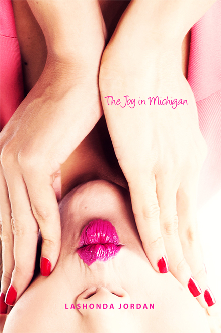 The Joy in Michigan - eBook