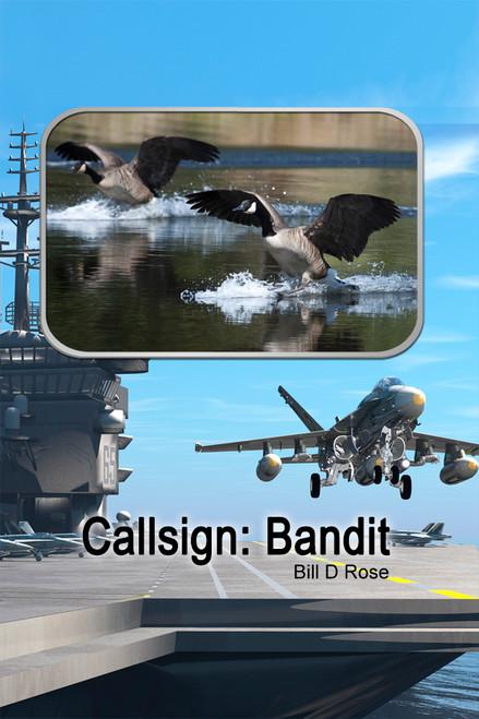 Callsign: Bandit - eBook