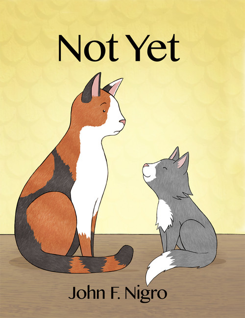 Not Yet - eBook