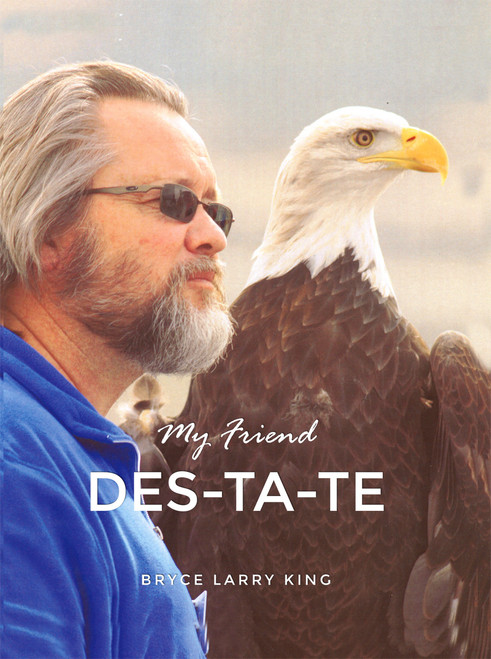 My Friend Des-Ta-Te - eBook