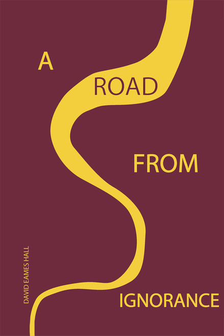A Road from Ignorance - eBook