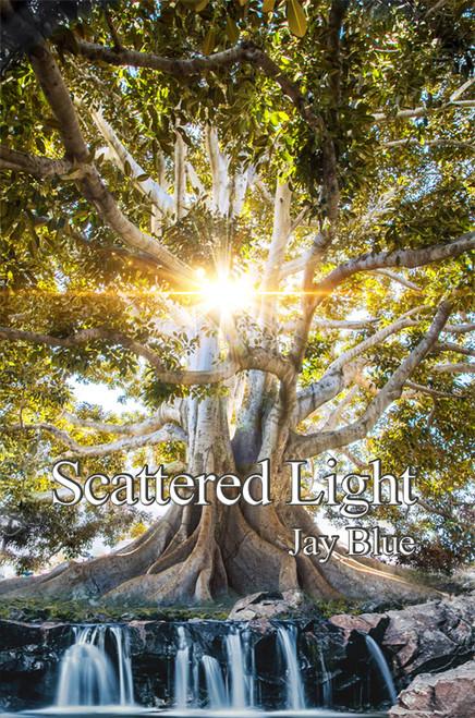 Scattered Light - eBook