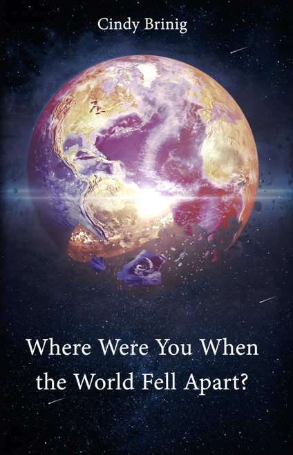 Where Were You When the World Fell Apart - eBook