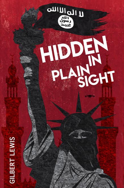 Hidden in Plain Sight - eBook
