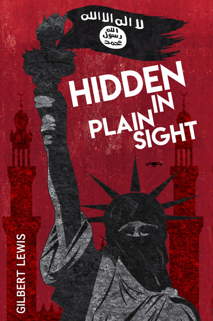 Hidden in Plain Sight - eBook