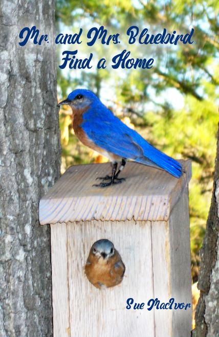 Mr. and Mrs. Bluebird Find a Home - eBook