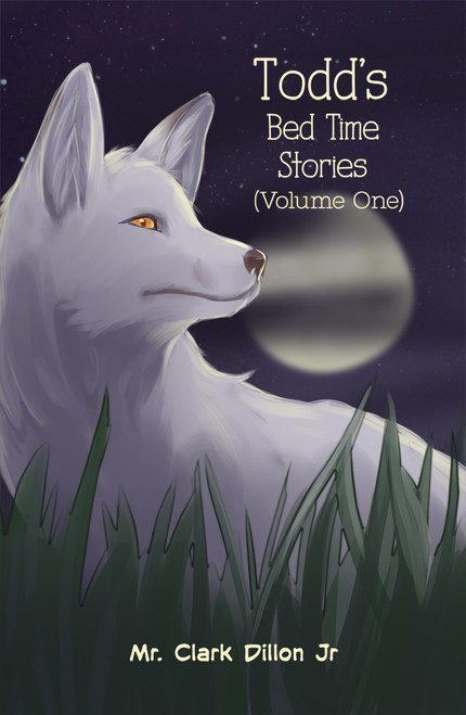 Todd's Bed Time Stories - eBook