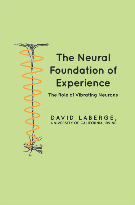 The Neural Foundation of Experience: The Role of Vibrating Neurons - eBook