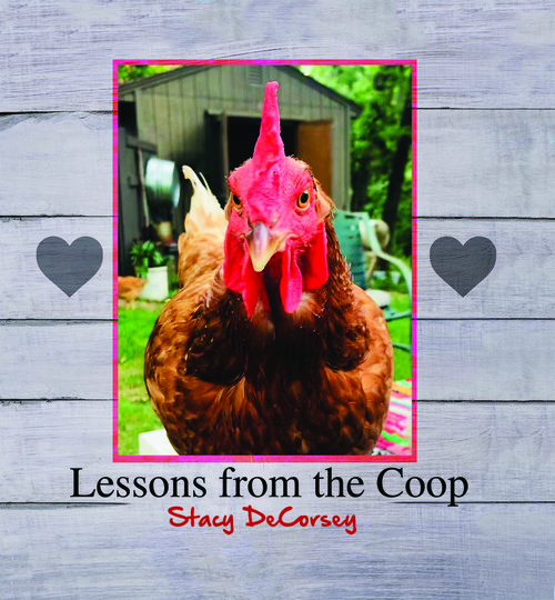 Lessons from the Coop - eBook
