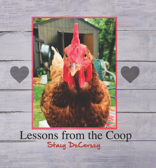 Lessons from the Coop