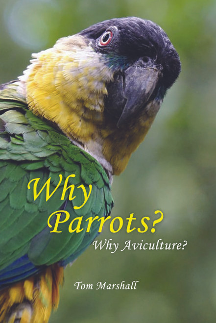 Why Parrots? Why Aviculture?