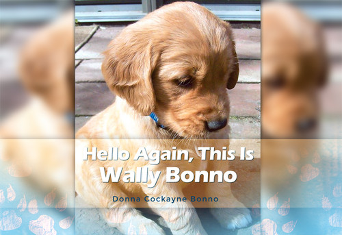 Hello Again, This Is Wally Bonno