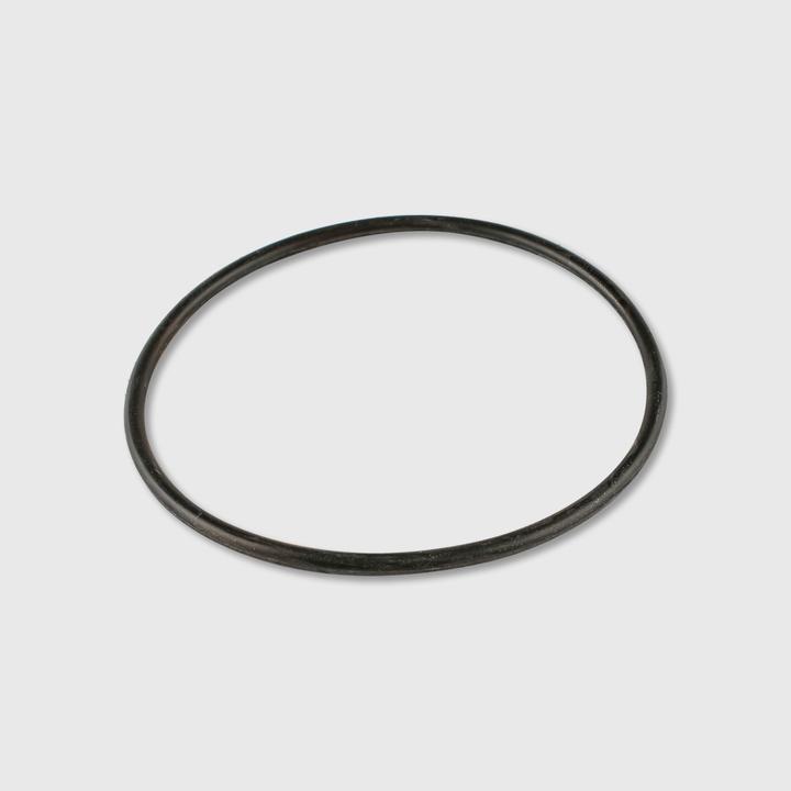 Large Servo Can O-Ring
