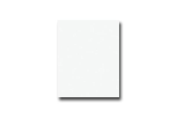 Brite White 2027 PVC Edgebanding