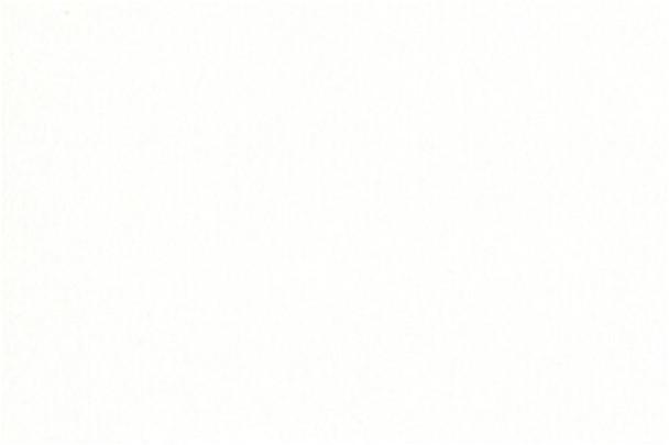 """555 Nova White Melamine - 3/4"""" x 61"""" x 109"""""""