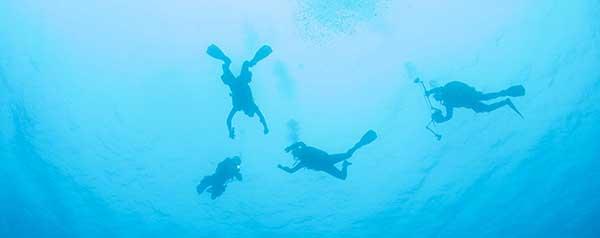 halcyon-dive-gear-news2.jpg