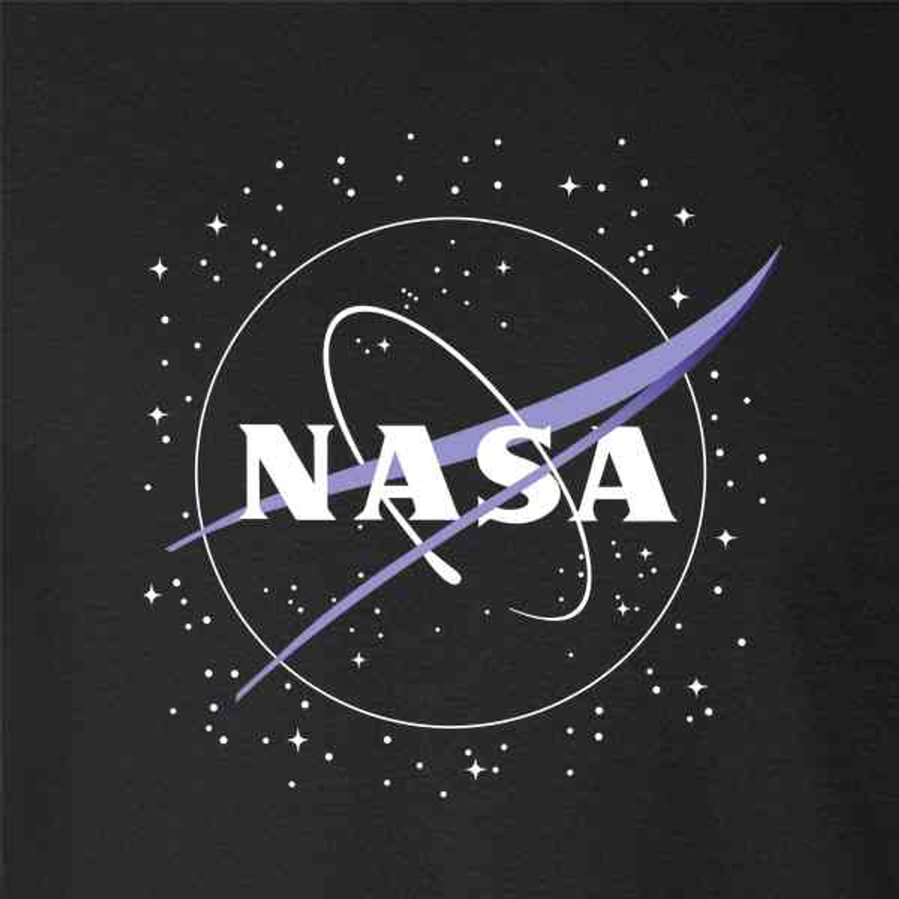 f1bc0d7e666 NASA Approved Meatball Logo With Stars - Pop Threads