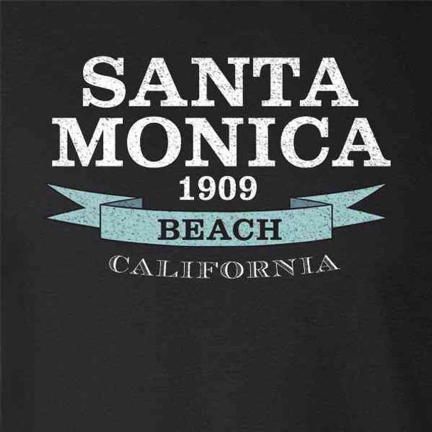 Santa Monica Beach Seal California Travel