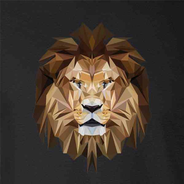 Lion Face Polygonal