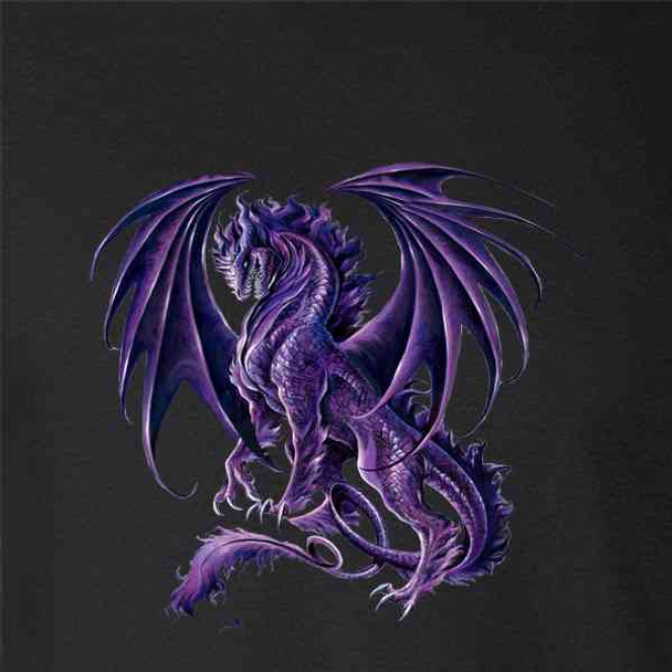 Draco Nox Dragon by Ruth Thompson Art