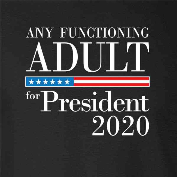 Any Functioning Adult For President 2020 Funny