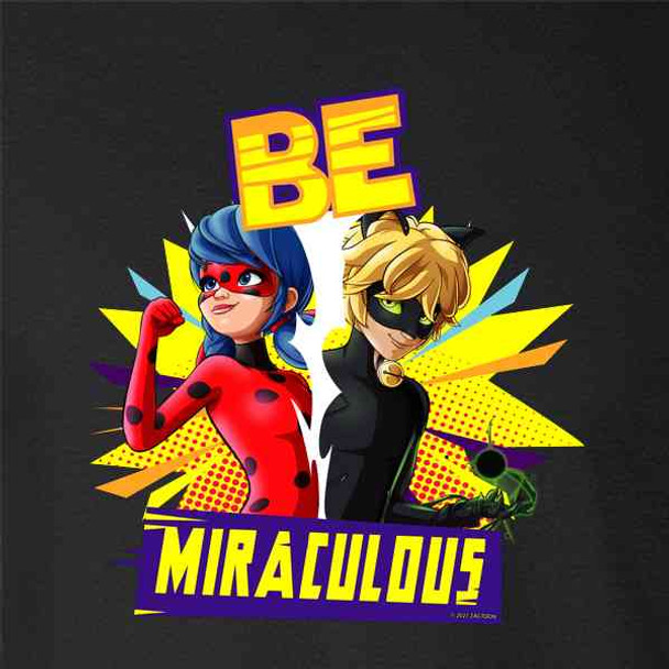 Miraculous Ladybug Cat Noir Merch Be Miraculous