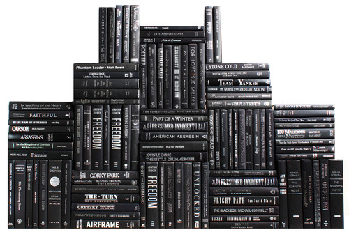 Modern Onyx & Silver Book Wall, S/100