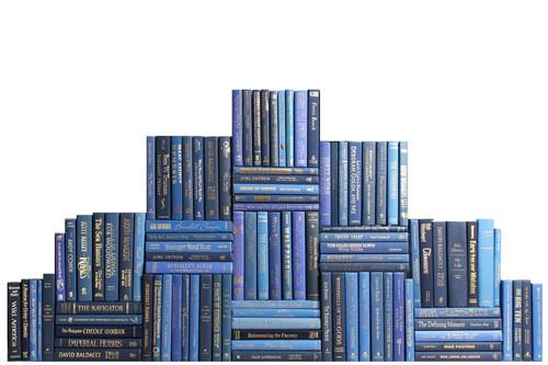 Modern Denim & Gold Book Wall, S/100