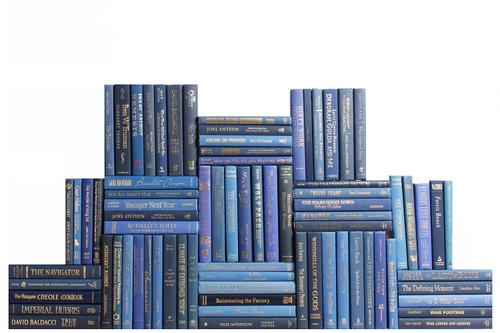 Modern Denim & Gold Book Wall, S/75