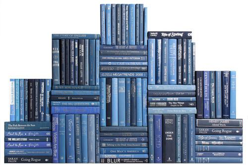 Modern Denim & Silver Book Wall, S/100
