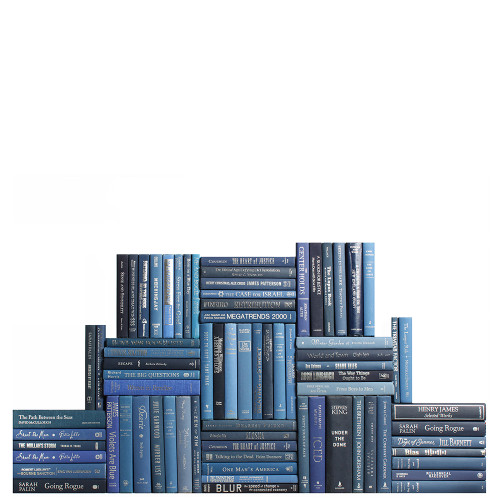 Modern Denim & Silver Book Wall, S/75