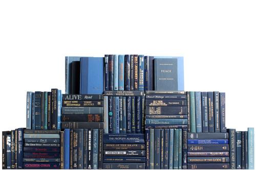 Modern Denim Book Wall, S/100