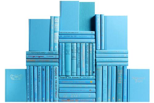 Modern Sky Book Wall, S/50