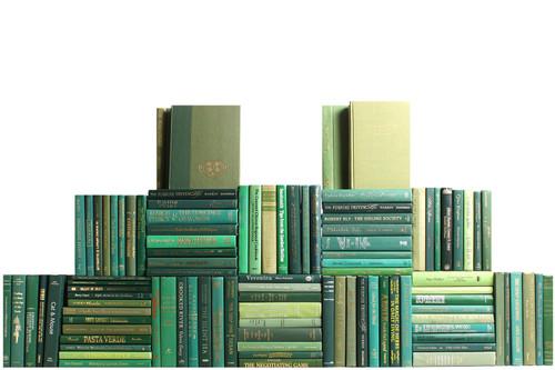 Modern Boxwood Book Wall, S/100
