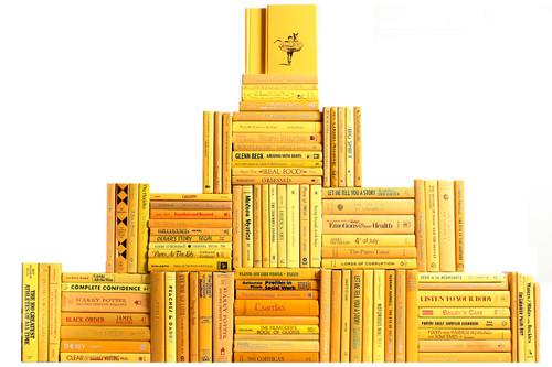 Modern Daffodil Book Wall, S/100