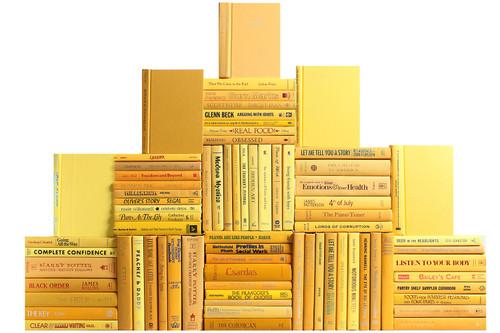 Modern Daffodil Book Wall, S/75