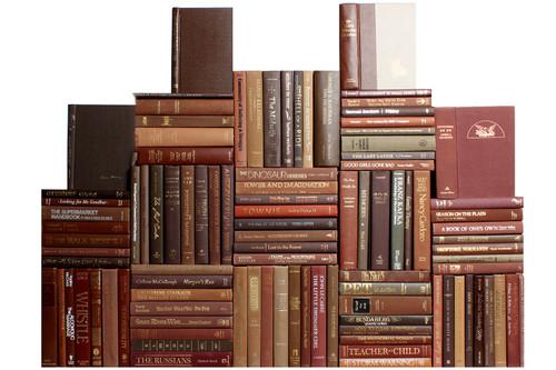 Modern Chocolate Book Wall, S/100