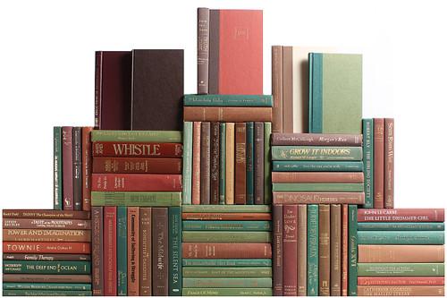 Modern Cabin Book Wall, S/75