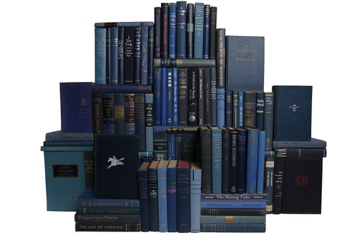Midcentury Denim Book Wall, S/100
