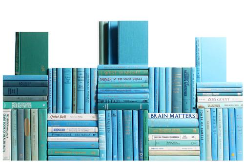Modern Ocean Book Wall, S/75
