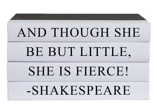 Little But Fierce Quote Book Stack, S/4