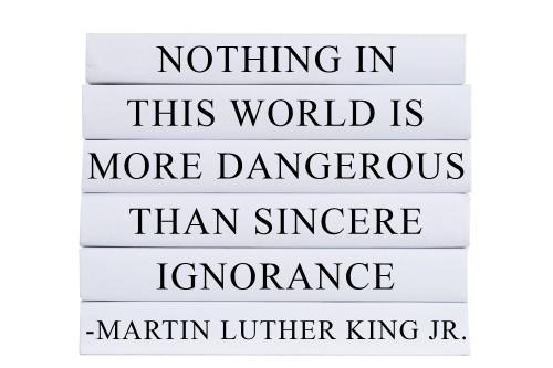 Dangerous Ignorance Quote Book Stack, S/6