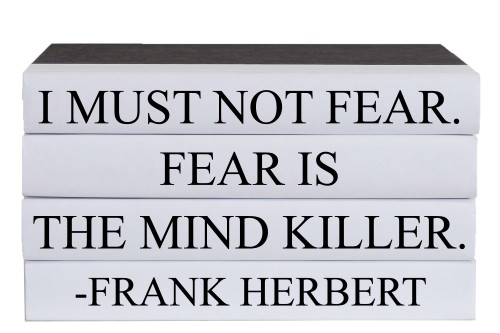 Fear Is The Mind Killer Quote Book Stack, S/5